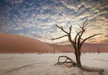 Глобальное потепление и таяние льдов могут привести к катастрофическим последствиям в десятках городов мира