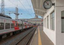 Утвержденный РЖД и правительством Санкт-Петербурга  проект развития Санкт-Петербургского железнодорожного узла (СПЖУ) предполагает сбалансированное развитие пассажирских и грузовых перевозок
