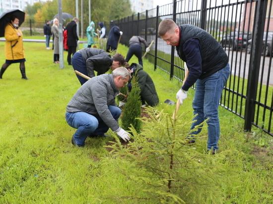 Сбербанк в Ярославле провел экологическую акцию по посадке деревьев