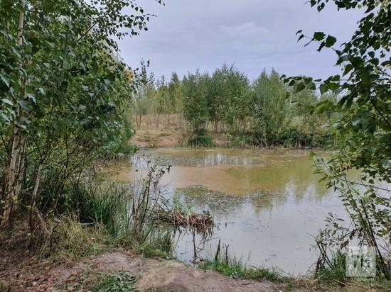 В озере под Казанью вода окрасилась в красный цвет
