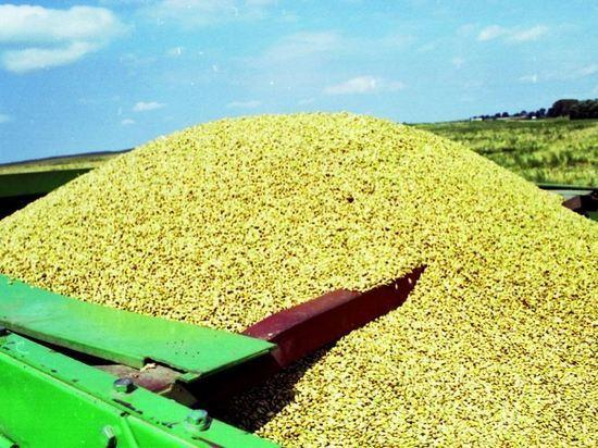 Россия увеличила экспорт сельхозтоваров на 18%