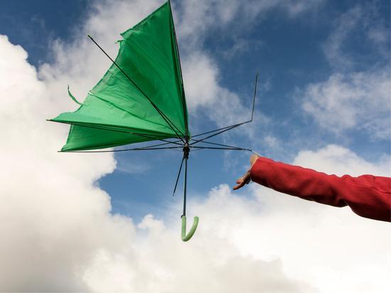 Сильный ветер налетит на Великий Новгород в пятницу