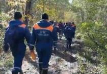 Появилось видео из леса по пути к месту крушения самолета Ан-26 под Хабаровском