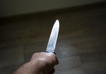 Обвиняемый в убийстве знакомой под Новосибирском мужчина предстанет перед судом