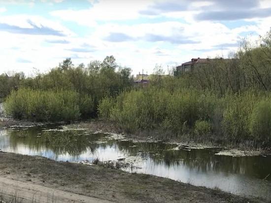 На разработку проекта ливневки вдоль бийской дамбы потратят почти 13 млн рублей