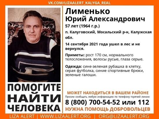 В Калужской области девятый день ищут заблудившегося в лесу мужчину
