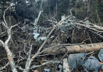 Все. Надежды больше нет. Шестеро человек – летчики и технические специалисты, отправившиеся из хабаровского аэропорта на Ан-26 для проверки радиолокационного оборудования, погибли. Обломки самолета обнаружены на сопке в районе горы Хребтова, в 40 км от Хабаровска