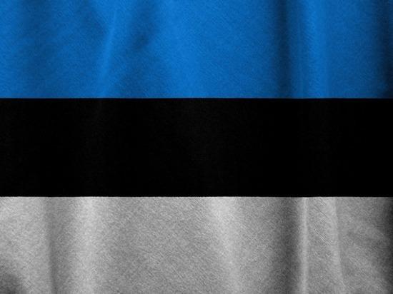 Эстония вручила российскому послу ноту протеста за нарушение воздушной границы