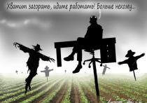На избирательных протоколах по выборам в Госдуму еще не успели просохнуть чернила, как экономисты призвали россиян готовиться к «сезонному подорожанию овощей»