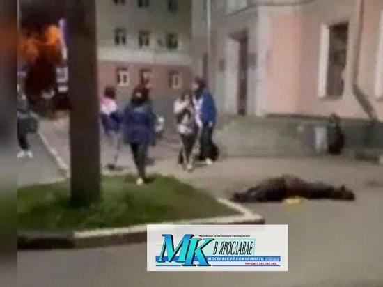 После смерти лошади в центре Ярославля, к борьбе с лошадниками привлекут казаков