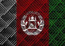 Лавров и Ле Дриан подтвердили готовность РФ и Франции сотрудничать по Афганистану