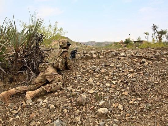 Талибы рассчитывают на помощь России в борьбе с наркотрафиком