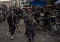 Эксперт назвал особенность жестокого поражения США в Афганистане
