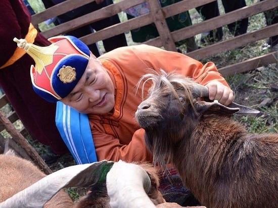 Самое  надежное дело в Туве  - это животноводство
