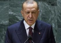 Президент Турции Редеп Тайип Эрдоган накануне встречи с российским коллегой Владимиром Путиным рассказал, чего ожидает от переговоров в Сочи