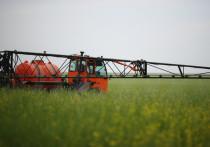 В Волгоградской области собрали более 3,8 млн тонн зерновых