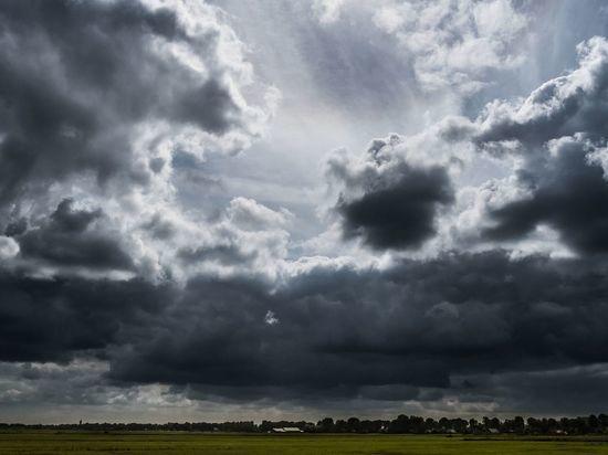 Облачная погода с сильным ветром придут в Ленобласть в субботу