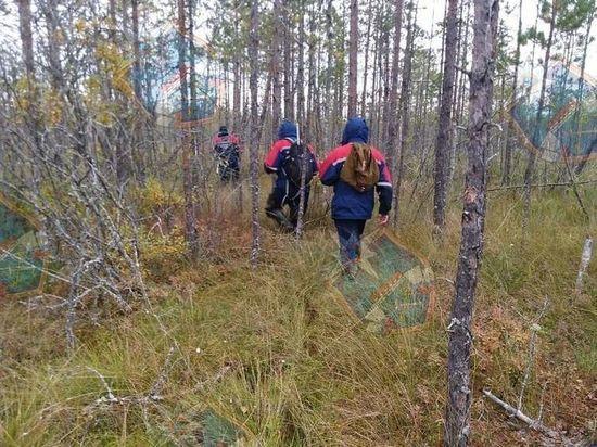 Пропавшего 81-летнего мужчину нашли мертвым в лесу под Кировском