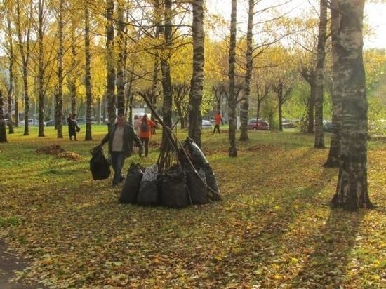 В Кирове проходят субботники