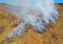 Сегодня лесоохрана тушит природный пожар в Солнечном районе, который зафиксировал спутниковый мониторинг