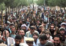 Официальный представитель временного правительства Афганистана Забиулла Муджахид заявил, что новые власти страны, состоящие из представителей «Талибана» (запрещенная в РФ террористическая организация), планирует уничтожить все пути контрабанды наркотиков за рубеж