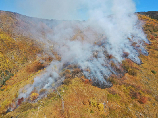 В Солнечном районе Хабаровского края обнаружен лесной пожар