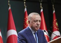 Соединенные Штаты в настоящее время поддерживают террористические организации в гораздо большей степени, чем ожидалось, заявил в пятницу президент Реджеп Тайип Эрдоган, добавив, что два союзника по НАТО должны находиться в совершенно ином положении