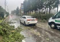В Лазаревском районе восстановили движение на трассе Джубга-Сочи 147