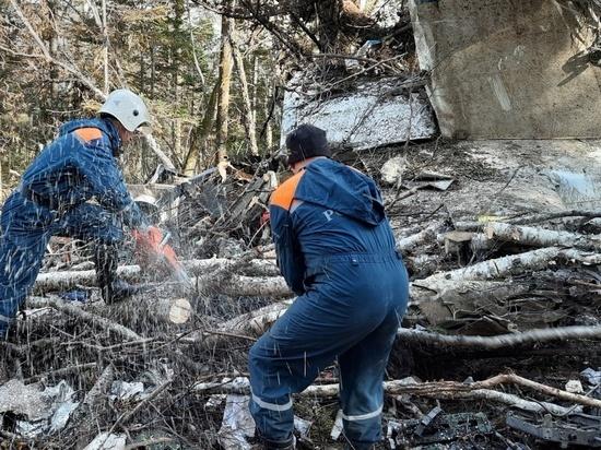 Появилось видео разбора обломков самолета Ан-26, разбившегося под Хабаровском