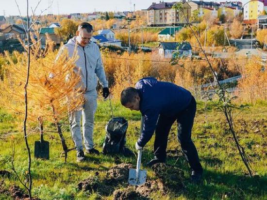 Больше 1000 деревьев и кустов высадили за день жители Аксарки
