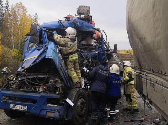 Водитель грузовика на полном ходу врезался в еврофуру