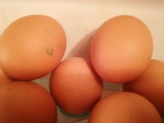 В Оренбурге подорожали яйца
