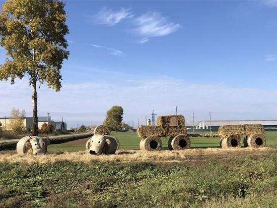 В Кировской области появился соломенный арт-объект