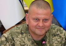 Украинская армия продолжает отражать агрессию и готовится к наступательным действиям