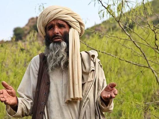 Талибы опровергли запрет брить бороды