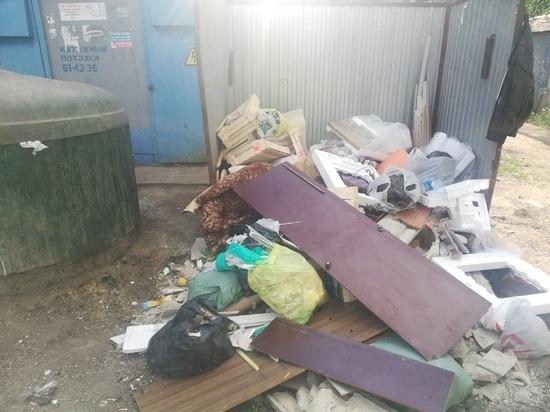 В захламленных площадках для ТКО в Оренбурге виноваты сами жители