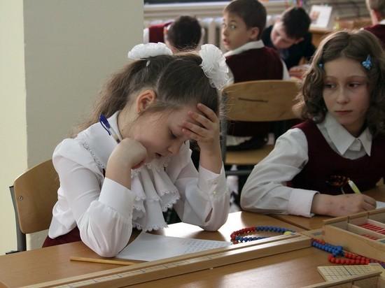 В российских школах по поручению Путина уменьшат количество контрольных