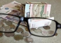 В Совфеде сообщили о росте средней пенсии до 20 тысяч рублей
