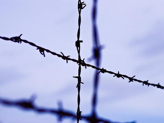 ФСБ рассекретила дело о массовом убийстве нацистами детей на Кавказе