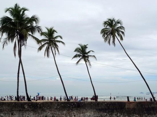 Власти Гоа назвали сроки открытия границ для туристов