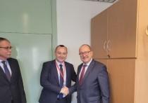 Батрынча и Рэйляну встретились с делегациями Венгрии и Турции в ПАСЕ