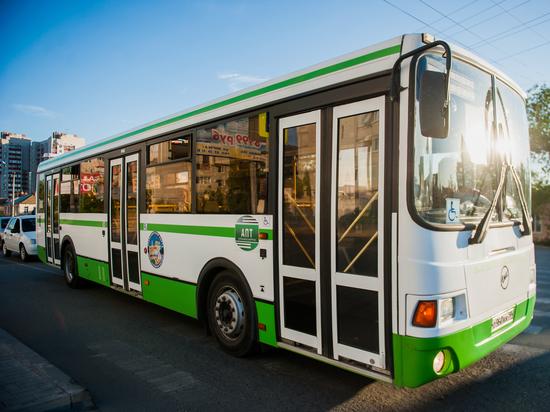 «Надежда на синих»: для Астрахани закупят 500 новых автобусов