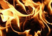 На месте пожара в Александро-Невском районе работают следователи СК