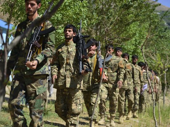 «Сидят в горах, едят талхан»: уроженец Панджшера описал сопротивление талибам