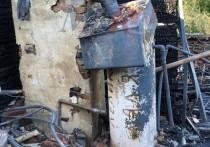 Появились фото с места смертельного пожара в Александро-Невском районе