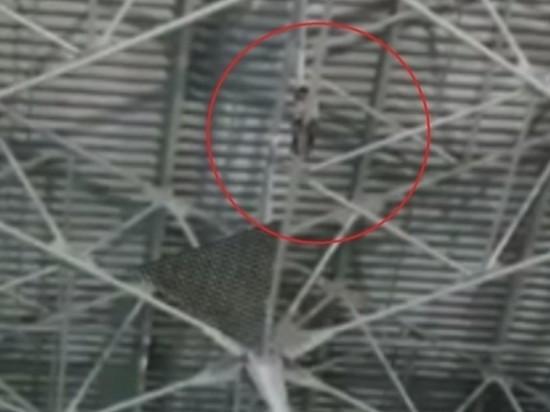"""Забравшегося под крышу аэропорта Внуково """"скалолаза"""" сняли с высоты"""