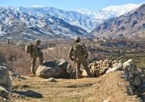 Американские военные назвали возможные сроки возрождения «Аль-Каиды»