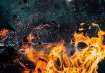 Последствия взрыва в Перово: черный копатель остался без рук