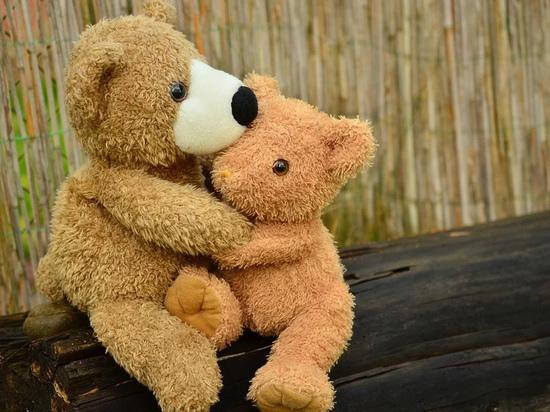 Московский школьник снимал видео с пытками плюшевых игрушек