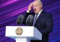 МИД Белоруссии: десяток зарубежных СМИ в очереди на интервью с Лукашенко